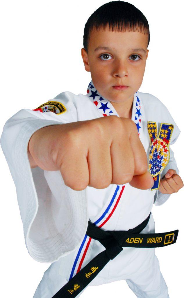 Karate Black Belt Punch