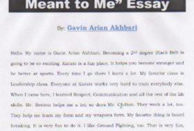 Gavin Arian Akhbari