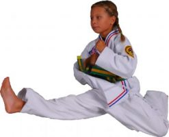 Awesome Martial Arts Girl