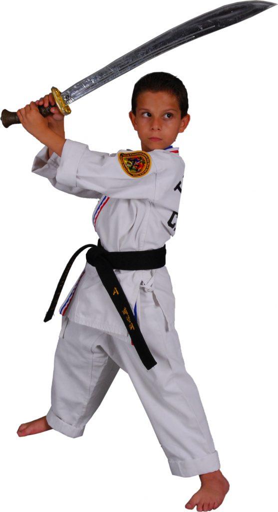 Black belt essays what black belt means to me