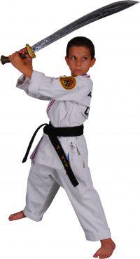 Karate Kid With Sword