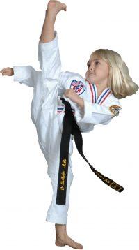 Great Kicking Karate Kid