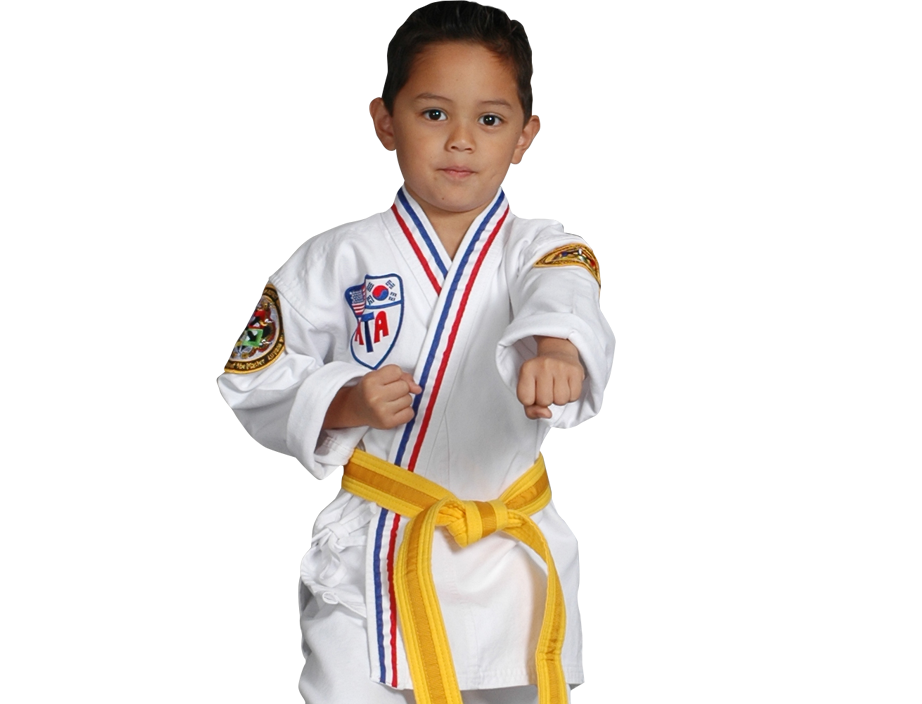 young boy in martial art stance